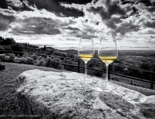 Ted Loos Discovers The Whites of Soave