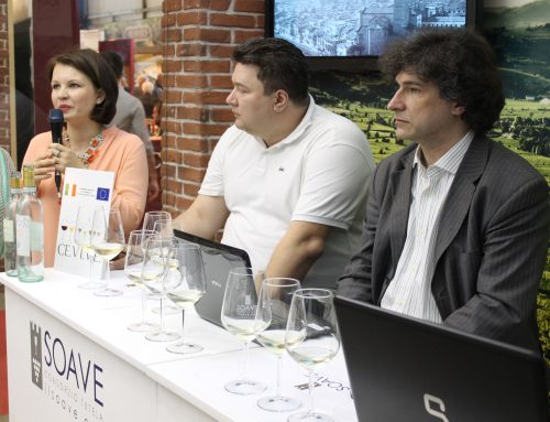 Soave World and Russian markets: What are consumers looking for?