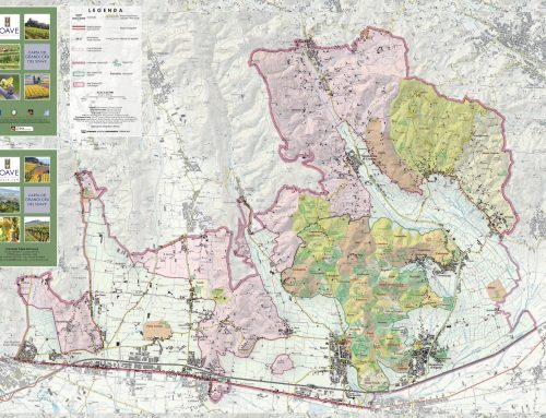 THE MAP OF THE SOAVE CRUS