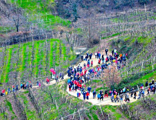 Montefortiana 2017: 20.000 atleti tra paesaggio storico, capitelli restaurati e biodiversità