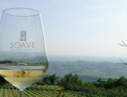 Soave wines